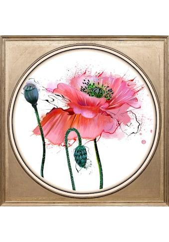 queence Acrylglasbild »Mohnblüte« kaufen