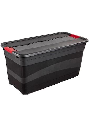 keeeper Transportbehälter »eckhart«, mit Deckel kaufen