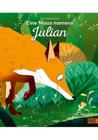 Buch »Eine Maus namens Julian / Joe Todd-Stanton, Maren Illinger« kaufen