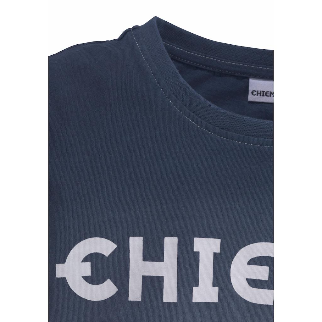 Chiemsee Langarmshirt, mit modischem Farbverlauf
