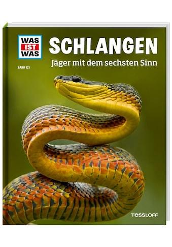 Buch »WAS IST WAS Band 121 Schlangen. Jäger mit dem sechsten Sinn / Nicolai... kaufen