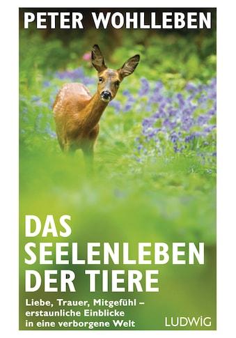 Buch »Das Seelenleben der Tiere / Peter Wohlleben« kaufen