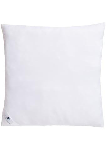 Microfaserkissen, »Melly«, Traumecht, Füllung: Polyesterfaser, Bezug: Polyester kaufen