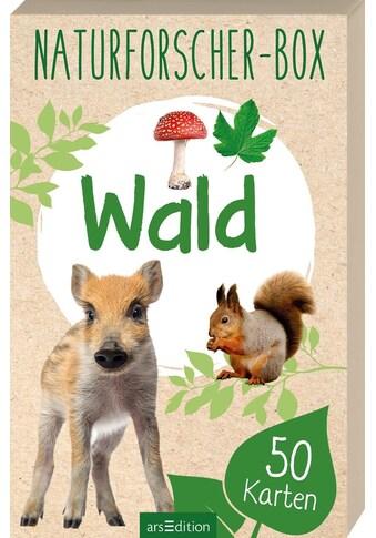 Buch »Naturforscher-Box - Wald / Eva Wagner« kaufen
