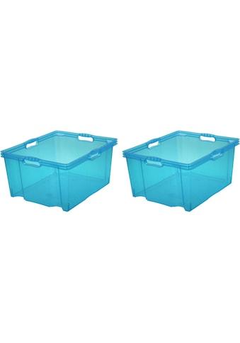 keeeper Aufbewahrungsbox »franz«, (Set, 2 St.) kaufen