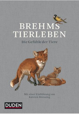 Buch »Brehms Tierleben / Alfred Brehm, Karsten Brensing« kaufen
