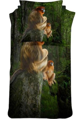 damai Bettwäsche »Snub Nosed Monkey«, mit einem Affen kaufen