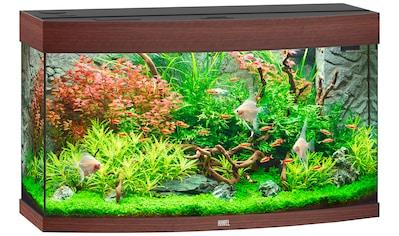 JUWEL AQUARIEN Aquarien - Set »Vision 180 LED + SBX Vision 180«, BxTxH: 92x41x128 cm, 180 l kaufen