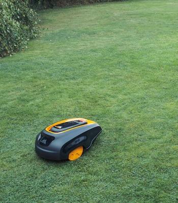 Rasenroboter im Einsatz