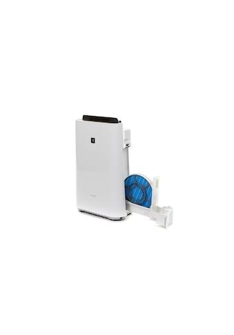 Sharp Kombigerät Luftbefeuchter und -reiniger »KC-D50EUW Plasmacluster«, für 38 m² Räume kaufen