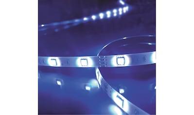 Brilliant Leuchten Light Strip LED-Streifen 5m bunt Tuya-App kaufen