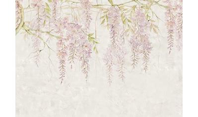 Komar Fototapete »Wisteria«, floral-Wald-natürlich kaufen