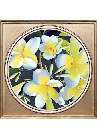 queence Acrylglasbild »Gelbe Blüten« kaufen