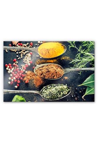 Wall-Art Küchenrückwand »Spritzschutz Kräutervielfalt« kaufen
