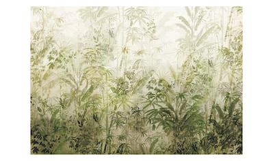 Komar Fototapete »Wilderness«, floral-Wald-natürlich kaufen