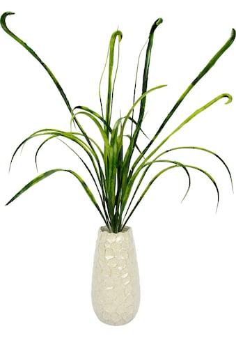 I.GE.A. Kunstgras »Grasbusch«, in Vase kaufen