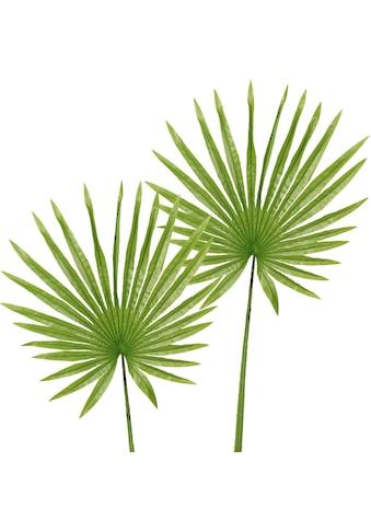 Creativ green Kunstzweig »Fächerpalmwedel« kaufen