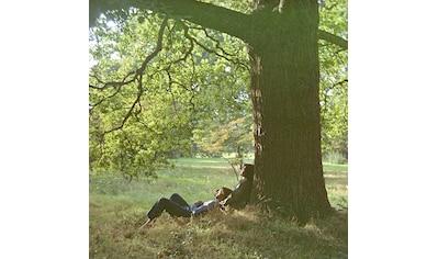 Vinyl »Plastic Ono Band (Dlx.2LP) / Lennon,John« kaufen