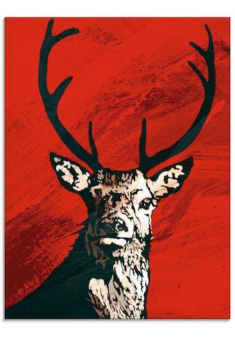 Artland Glasbild »Hirsch«, Wildtiere, (1 St.) kaufen