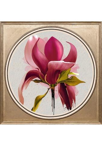 queence Acrylglasbild »Magnolie« kaufen