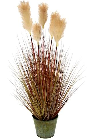 I.GE.A. Kunstpflanze »Pampasgras«, Im Metalltopf kaufen