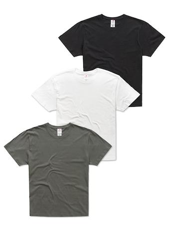 Stedman T-Shirt, im 3er-Pack aus Bio-Baumwolle kaufen