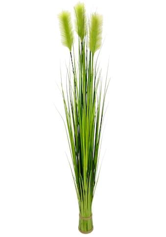I.GE.A. Kunstpflanze »Pampasgrasbund« kaufen