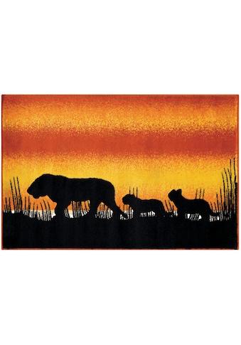 Arte Espina Kinderteppich »Lol Kids 4426«, rechteckig, 11 mm Höhe, Löwen Motiv kaufen