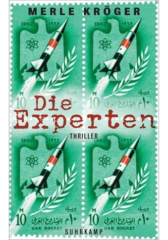 Buch »Die Experten / Merle Kröger, Thomas Wörtche« kaufen