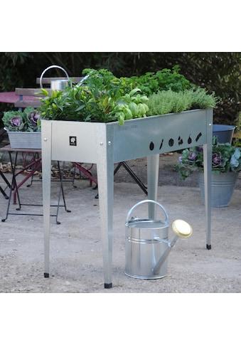 Herstera Garden Hochbeet »Urban«, BxTxH: 100x40x84 cm kaufen