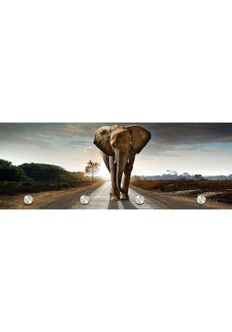 Spiegelprofi GmbH Garderobe »Elefant« kaufen