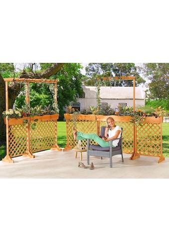 PROMADINO Holzspalier mit Pflanzkasten, BxTxH: 70x41x205 cm kaufen
