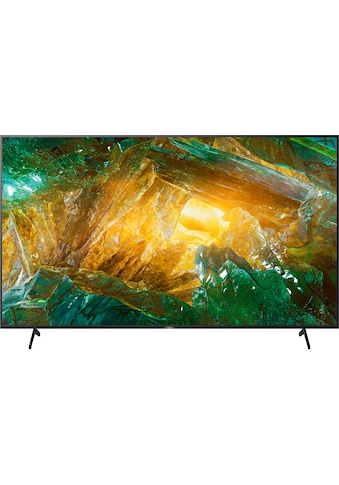 Sony KD85XH8096 Bravia LCD - LED Fernseher (215 cm / (85 Zoll), 4K Ultra HD, Android TV kaufen