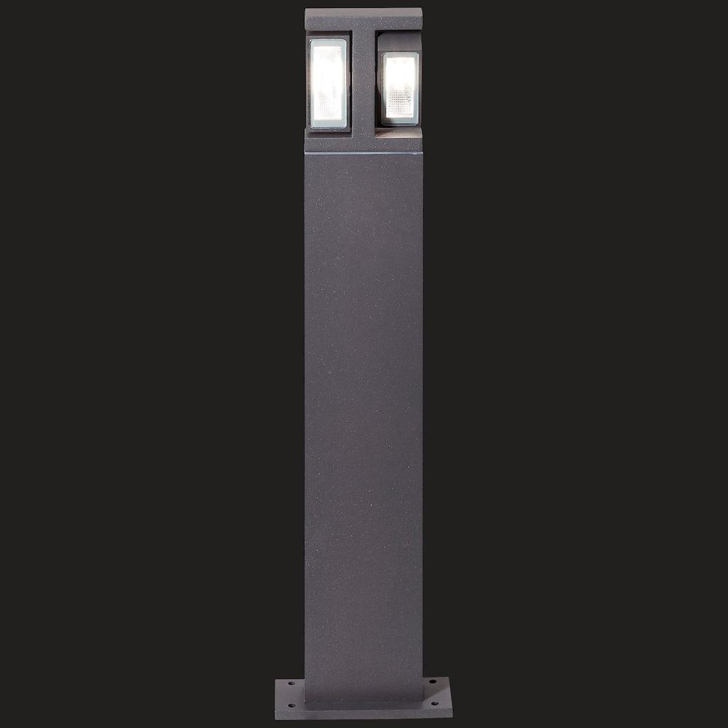 AEG Glynn LED Außenstandleuchte 2flg anthrazit