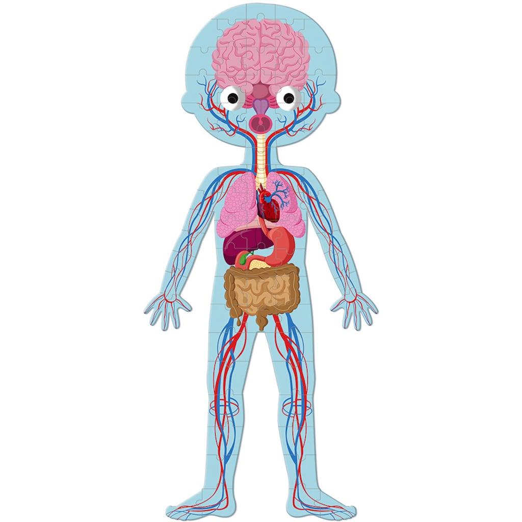 Janod Konturenpuzzle »Der menschliche Körper«