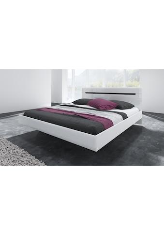 Helvetia Bett »Hektor« kaufen