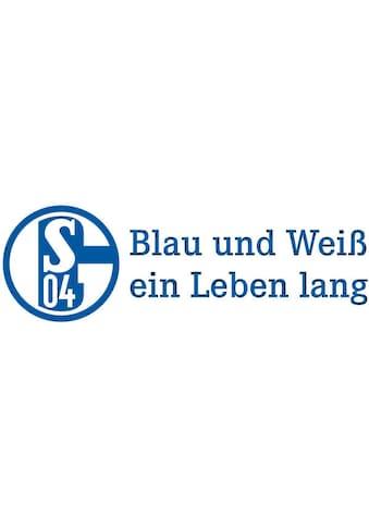 Wall-Art Wandtattoo »FC Schalke 04 Blau und Weiß« kaufen