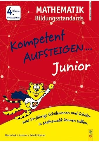 Buch »Kompetent Aufsteigen Junior Mathematik Bildungsstandards 4. Klasse VS / Isabella... kaufen