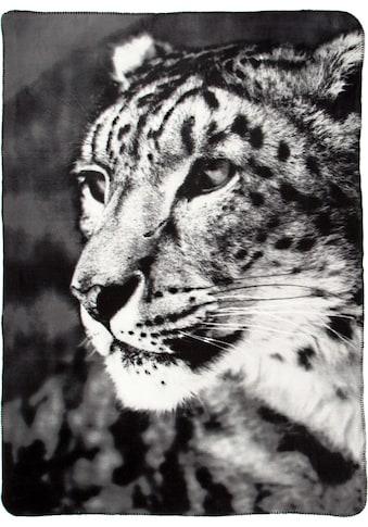 Wohndecke »Leopard«, BIEDERLACK kaufen
