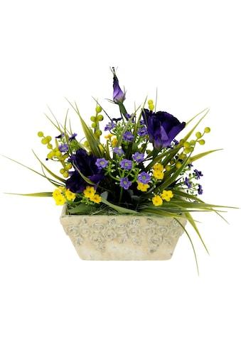 I.GE.A. Kunstpflanze, Arrangement in Schale kaufen