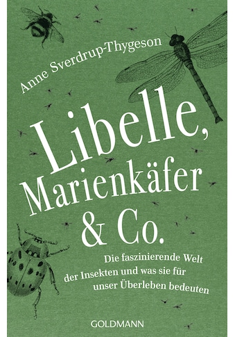 Buch »Libelle, Marienkäfer & Co. / Anne Sverdrup-Thygeson, Sylvia Kall« kaufen