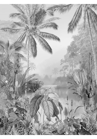 KOMAR Packung: Fototapete »Lac Tropical Black & White«, aus Vlies kaufen