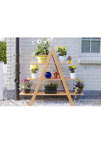 PROMADINO Blumentreppe »MAXI«, BxTxH: 120x31x137 cm kaufen