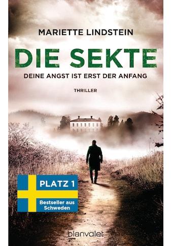 Buch »Die Sekte - Deine Angst ist erst der Anfang / Mariette Lindstein, Kerstin Schöps« kaufen