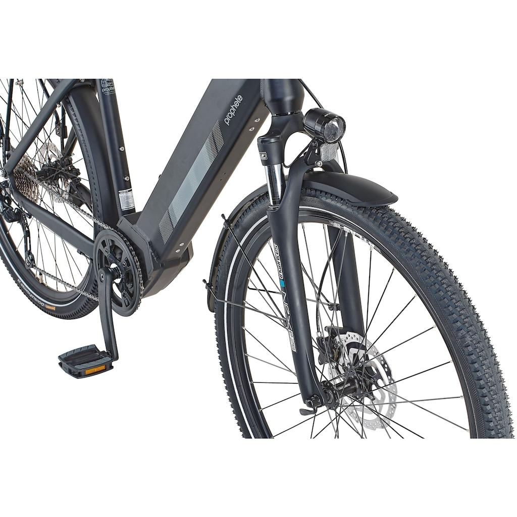 Prophete E-Bike »Prophete Entdecker InsideTwo«, 10 Gang, Shimano, Deore, Mittelmotor 250 W