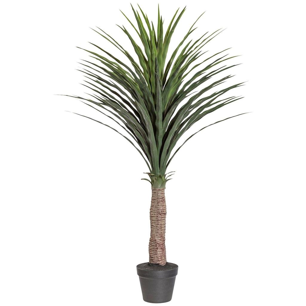 Creativ green Kunstpalme »Palme Yucca«, im Kunststofftopf