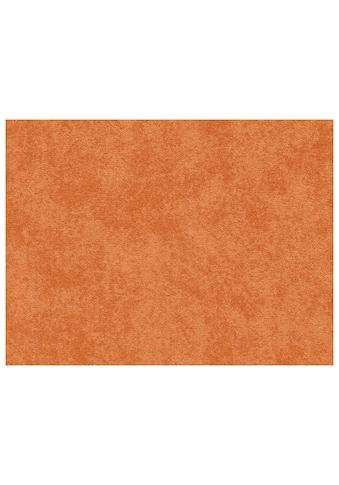 ANDIAMO Teppichboden »Sarah«, Breite 400 cm, Meterware kaufen