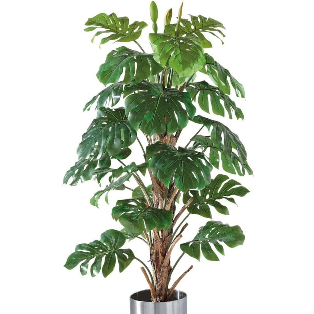 Schneider Kunstpflanze »Philo-Baum«