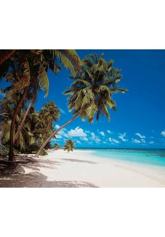 "Komar Vliestapete »Maldives""«, Strand kaufen"