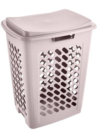 keeeper Wäschebox »piet« kaufen